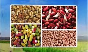 Đề nghị Ấn Độ bỏ qui định tạm dừng nhập khẩu nông sản Việt Nam