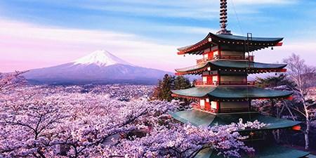 Xuất khẩu sang Nhật quí I/2017 tăng ở hầu hết các nhóm hàng