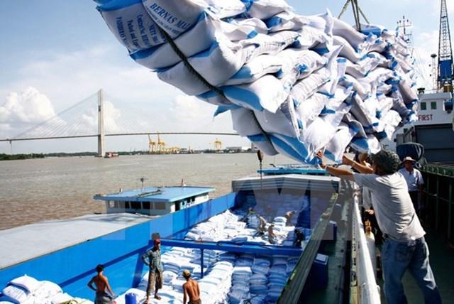 Xuất khẩu gạo vẫn trong xu hướng giảm