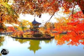 Thúc đẩy quan hệ thương mại, đầu tư Việt Nam - Hàn Quốc
