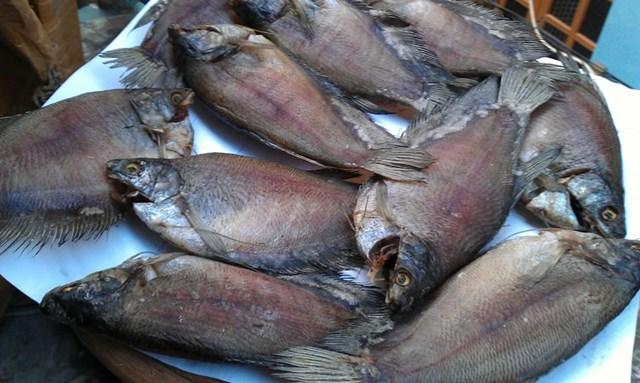 Ngành hàng cá bổi ở Cà Mau gặp khó