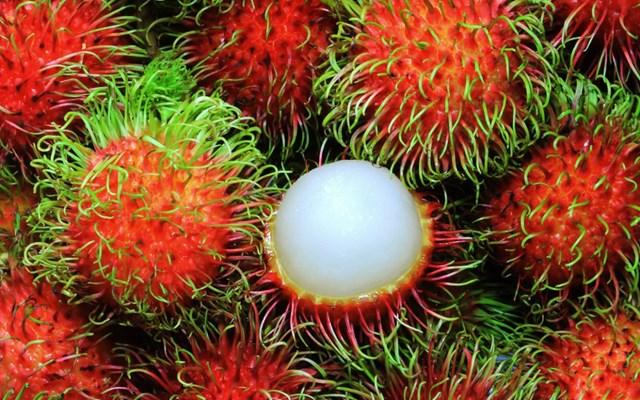 New Zealand sẽ sớm mở cửa thị trường cho chôm chôm của Việt Nam