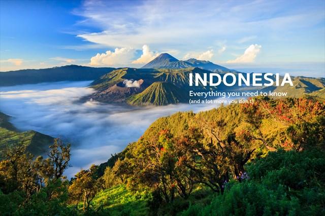 Hàng hóa nhập khẩu từ thị trường Indonesia tăng mạnh