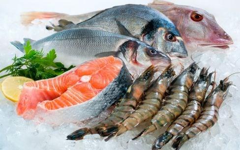 Doanh nghiệp hải sản bắt tay chống đánh bắt thủy sản bất hợp pháp - IUU