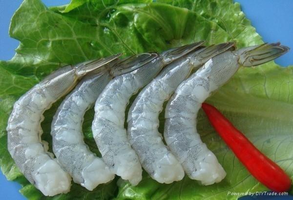 Tôm Việt tăng trưởng mạnh tại thị trường châu Âu