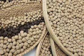 Giá thức ăn chăn nuôi nhập khẩu tuần 6-13/10/2017