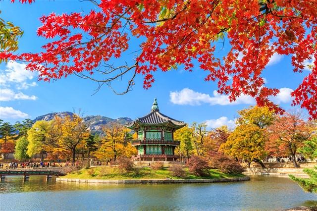 Hàn Quốc – thị trường nhập siêu lớn nhất của Việt Nam