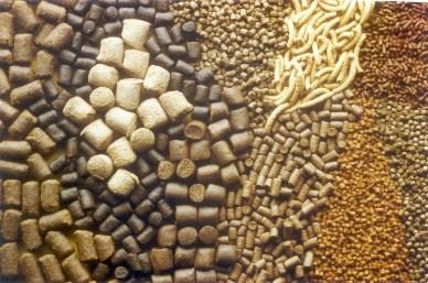 Giá nguyên liệu sản xuất thức ăn chăn nuôi nhập khẩu  tuần 17 – 24/11/2017