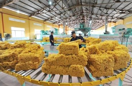 Xuất khẩu cao su 10 tháng đầu năm tăng trưởng mạnh