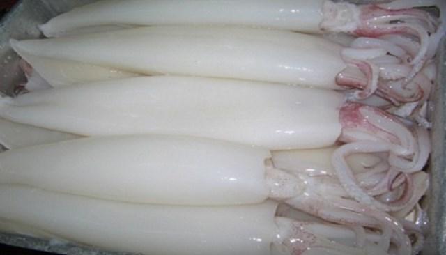 Xuất khẩu mực, bạch tuộc sang Trung Quốc tăng mạnh nhất