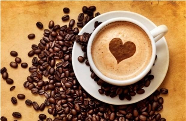 Giá cà phê ngày 1/5/2018 giảm nhẹ