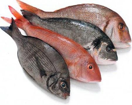 Thủy sản nhập khẩu vào Việt Nam tăng mạnh