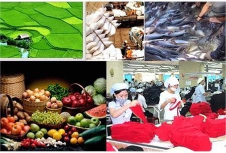 Nông sản xuất siêu tới 7,5 tỷ USD
