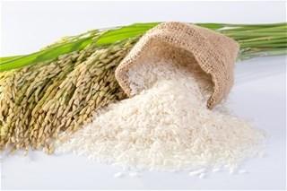 Xuất khẩu gạo 4 tháng đầu năm giảm cả về lượng, giá và kim ngạch