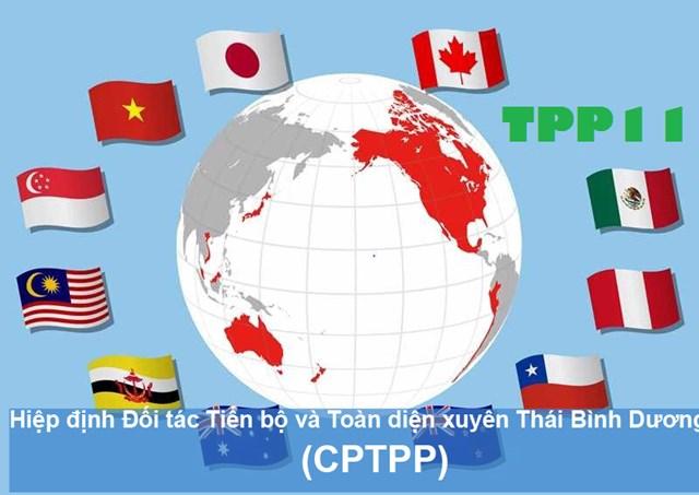 Thực thi CPTPP: Cán cân thương mại tăng trưởng tích cực