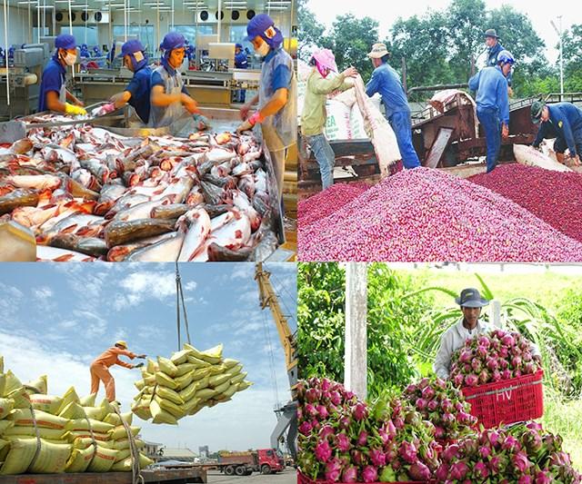 Tin đáng chú ý 8/10/2019: Giá tôm, trái cây tăng mạnh; xuất khẩu cao su khó khăn
