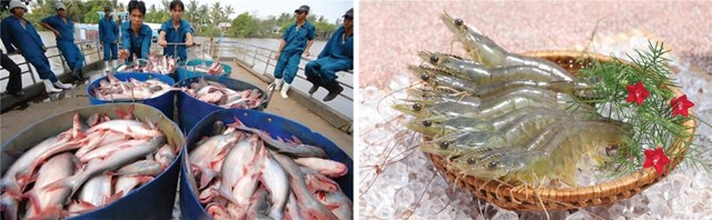 """Cá tôm mất giá, xuất khẩu thủy sản sẽ chỉ """"cán đích"""" 9 tỷ USD"""