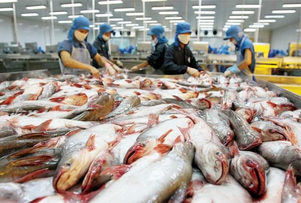 Nhiều bất lợi làm xuất khẩu thủy sản sụt giảm