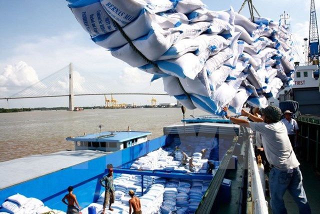 Các thị trường chủ yếu tiêu thụ gạo Việt Nam 11 tháng đầu năm 2019