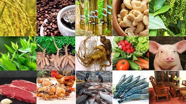Quí I/2020 nông, lâm, thủy sản xuất siêu hơn 3 tỉ USD giữa đại dịch COVID-19