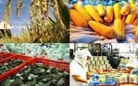 Góc nhìn lạc quan về xuất khẩu nông sản thời Covid-19