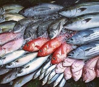 Kim ngạch nhập khẩu thủy sản quý 1/2020 sụt giảm nhẹ