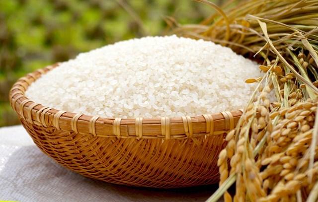 Giá gạo ngày 8/5/2020 biến động nhẹ