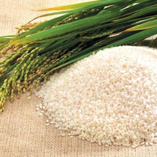 Giá lúa gạo ngày 19/5/2020 tăng nhẹ