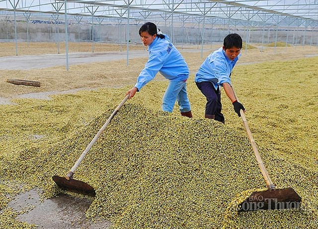 Bộ Công Thương mở rộng thị trường Nhật Bản cho nông sản Việt