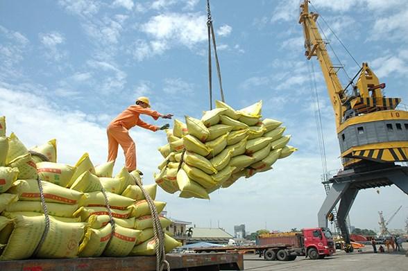 """Xuất khẩu gạo vào EU: """"Ô cửa"""" nhỏ cũng phải tận dụng tốt"""