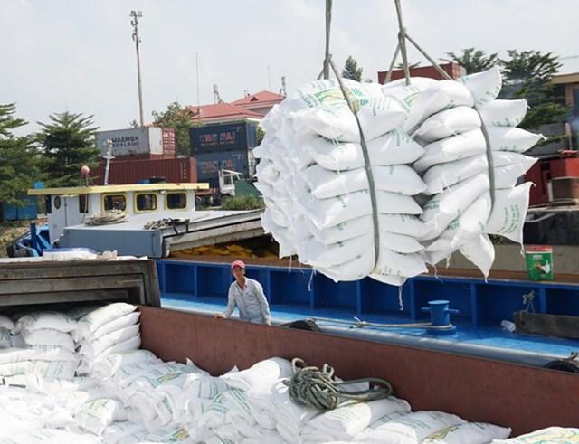 Giá gạo Việt tăng lên mức cao nhất trong 9 năm