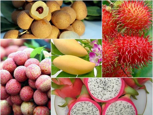 Xuất khẩu rau quả sang Trung Quốc giảm, sang Đông Nam Á tăng mạnh