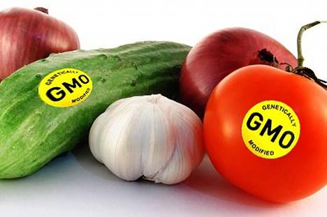 Nghị định của CP sửa đổi quy định về an toàn sinh học đối với sinh vật biến đổi gen