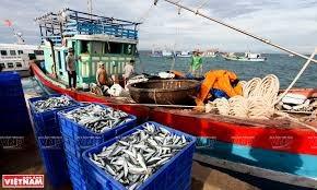 Xuất khẩu thủy sản 11 tháng đầu năm 2020 đạt trên 7,68 tỷ USD