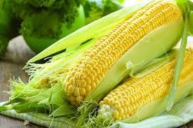 Năm 2021 Trung Quốc sẽ tăng diện tích trồng ngô do giá tăng kỷ lục