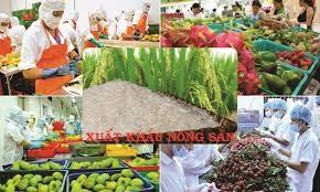 Xuất khẩu nông sản tăng tốc ngay từ đầu năm