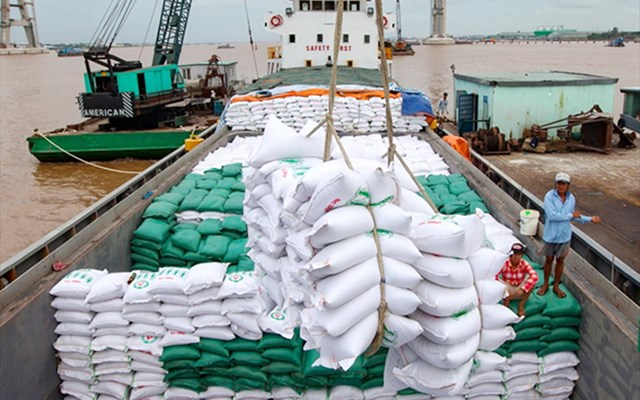 Xuất khẩu gạo năm 2020 sang các thị trường chính đều tăng kim ngạch