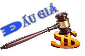Thông tư 108/2020/TT-BTC quy định khung thù lao dịch vụ đấu giá tài sản