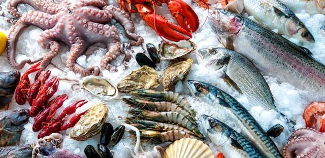 OECD – FAO dự báo sản lượng thủy sản thế giới sẽ đạt 200 triệu tấn vào năm 2029