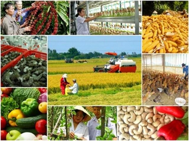 Xuất khẩu nông lâm thủy sản đầu năm đạt gần 3,5 tỷ USD