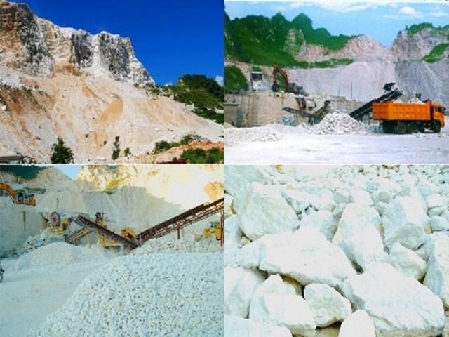 Thị trường cung cấp quặng và khoáng sản cho VIệt Nam tháng 1/2021