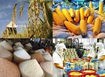 Xuất siêu nông sản giảm hơn 40% trong 4 tháng