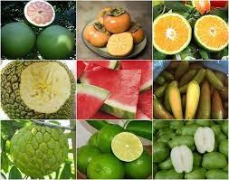 Xuất khẩu rau quả sang các thị trường 4 tháng đầu năm 2021