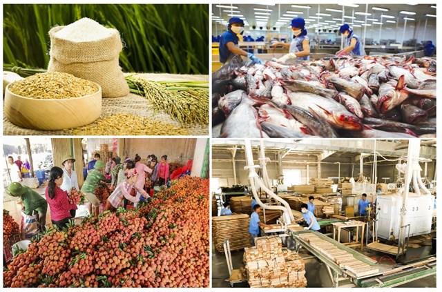 """Nông sản Việt """"thông đường"""" sang Trung Quốc"""