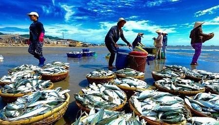 Xuất khẩu thủy sản của Indonesia tăng khả quan trong bối cảnh COVID-19