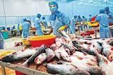 FAO: Sản lượng thủy sản toàn cầu có thể giảm 5% trong năm 2021