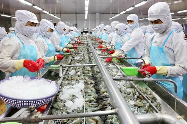 Xuất khẩu thủy sản năm 2021 dự báo cán đích 9 tỷ USD
