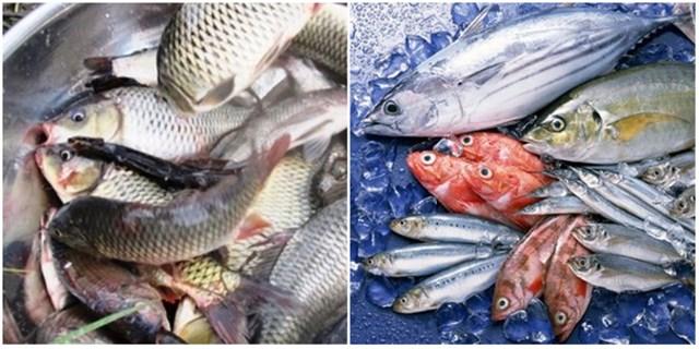 Thị trường xuất khẩu thủy sản 6 tháng đầu năm 2021