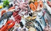 Thủy sản Việt Nam có nguy cơ mất thị trường EU nếu ngành khai thác hải sản bị EC phạt thẻ đỏ
