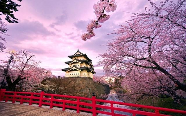 Nhật Bản cân nhắc biện pháp kích thích trên 5.000 tỷ yen